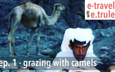 Grazing With Camels – Episode 1